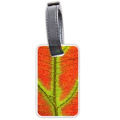 Nature Leaves Luggage Tags (one Side)  by BangZart