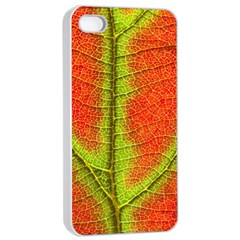 Nature Leaves Apple Iphone 4/4s Seamless Case (white) by BangZart