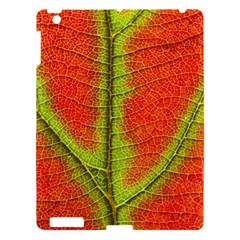 Nature Leaves Apple Ipad 3/4 Hardshell Case by BangZart