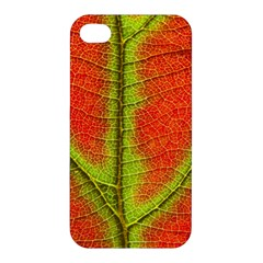 Nature Leaves Apple Iphone 4/4s Premium Hardshell Case by BangZart