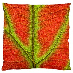 Nature Leaves Large Cushion Case (two Sides) by BangZart