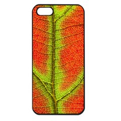 Nature Leaves Apple Iphone 5 Seamless Case (black) by BangZart