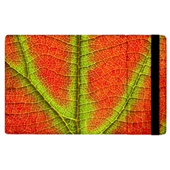 Nature Leaves Apple Ipad 2 Flip Case by BangZart