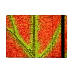 Nature Leaves Apple Ipad Mini Flip Case