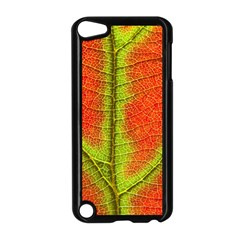 Nature Leaves Apple Ipod Touch 5 Case (black)