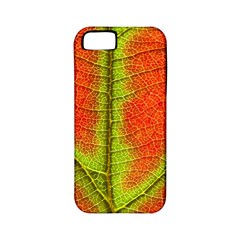 Nature Leaves Apple Iphone 5 Classic Hardshell Case (pc+silicone) by BangZart