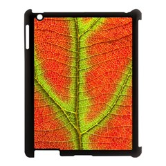 Nature Leaves Apple Ipad 3/4 Case (black) by BangZart