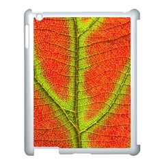 Nature Leaves Apple Ipad 3/4 Case (white) by BangZart