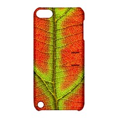 Nature Leaves Apple Ipod Touch 5 Hardshell Case With Stand by BangZart