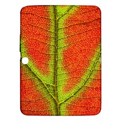 Nature Leaves Samsung Galaxy Tab 3 (10 1 ) P5200 Hardshell Case