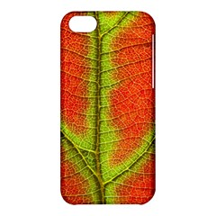 Nature Leaves Apple Iphone 5c Hardshell Case by BangZart