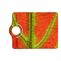 Nature Leaves Kindle Fire Hd (2013) Flip 360 Case by BangZart