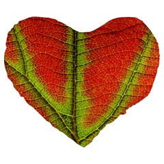 Nature Leaves Large 19  Premium Flano Heart Shape Cushions