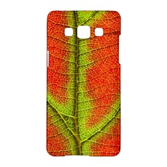 Nature Leaves Samsung Galaxy A5 Hardshell Case  by BangZart