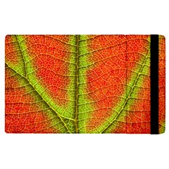 Nature Leaves Apple Ipad Pro 12 9   Flip Case by BangZart