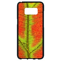 Nature Leaves Samsung Galaxy S8 Black Seamless Case
