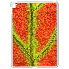 Nature Leaves Apple Ipad Pro 9 7   White Seamless Case by BangZart