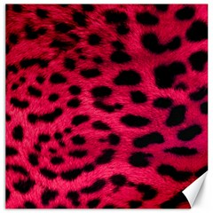 Leopard Skin Canvas 16  X 16