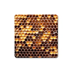 Honey Honeycomb Pattern Square Magnet