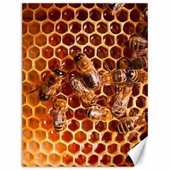 Honey Bees Canvas 12  X 16