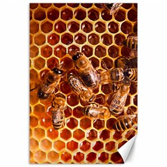 Honey Bees Canvas 24  X 36  by BangZart