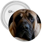 English Mastiff 3  Button