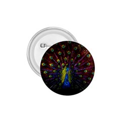 Beautiful Peacock Feather 1 75  Buttons by BangZart
