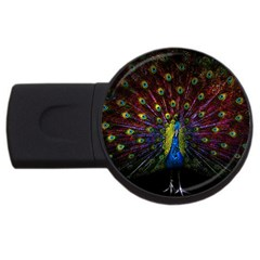 Beautiful Peacock Feather Usb Flash Drive Round (2 Gb) by BangZart