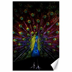 Beautiful Peacock Feather Canvas 24  X 36  by BangZart