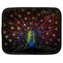 Beautiful Peacock Feather Netbook Case (large)