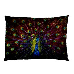 Beautiful Peacock Feather Pillow Case