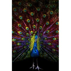 Beautiful Peacock Feather 5 5  X 8 5  Notebooks by BangZart