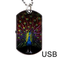 Beautiful Peacock Feather Dog Tag Usb Flash (two Sides) by BangZart