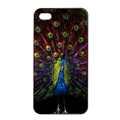 Beautiful Peacock Feather Apple Iphone 4/4s Seamless Case (black) by BangZart