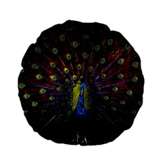 Beautiful Peacock Feather Standard 15  Premium Flano Round Cushions by BangZart