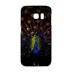 Beautiful Peacock Feather Galaxy S6 Edge by BangZart