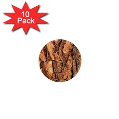 Bark Texture Wood Large Rough Red Wood Outside California 1  Mini Magnet (10 Pack)