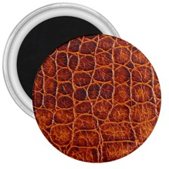 Crocodile Skin Texture 3  Magnets by BangZart