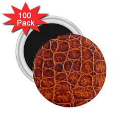 Crocodile Skin Texture 2 25  Magnets (100 Pack)  by BangZart