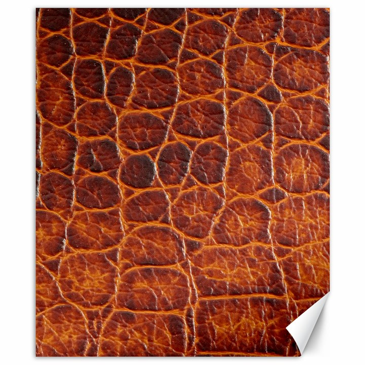 Crocodile Skin Texture Canvas 8  x 10