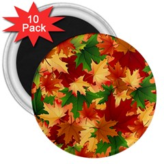 Autumn Leaves 3  Magnets (10 Pack)