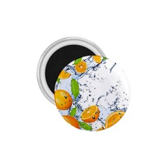 Fruits Water Vegetables Food 1 75  Magnets by BangZart