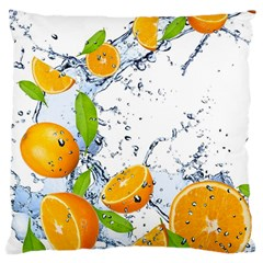 Fruits Water Vegetables Food Large Cushion Case (two Sides)