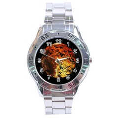 Mars Stainless Steel Analogue Watch by Valentinaart