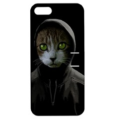 Gangsta Cat Apple Iphone 5 Hardshell Case With Stand by Valentinaart