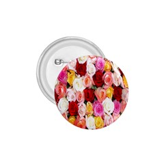 Rose Color Beautiful Flowers 1 75  Buttons by BangZart