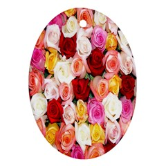 Rose Color Beautiful Flowers Oval Ornament (two Sides) by BangZart