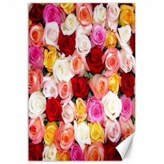 Rose Color Beautiful Flowers Canvas 20  X 30