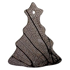 Sea Fan Coral Intricate Patterns Ornament (christmas Tree)