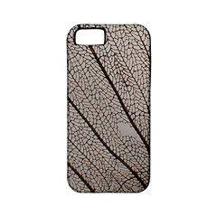 Sea Fan Coral Intricate Patterns Apple Iphone 5 Classic Hardshell Case (pc+silicone) by BangZart